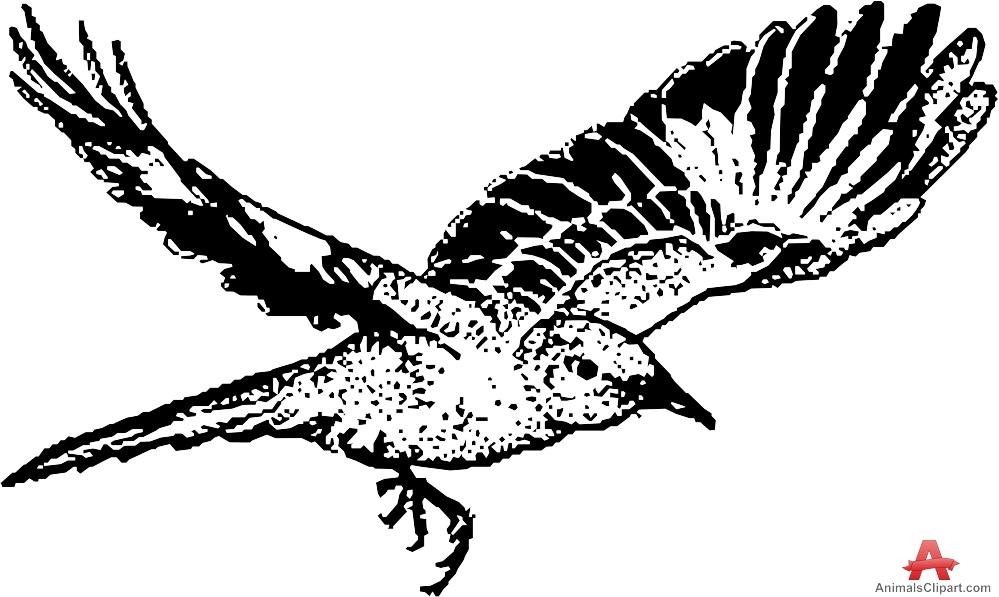 Mockingbird clipart #10