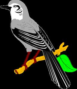 Mockingbird clipart #3