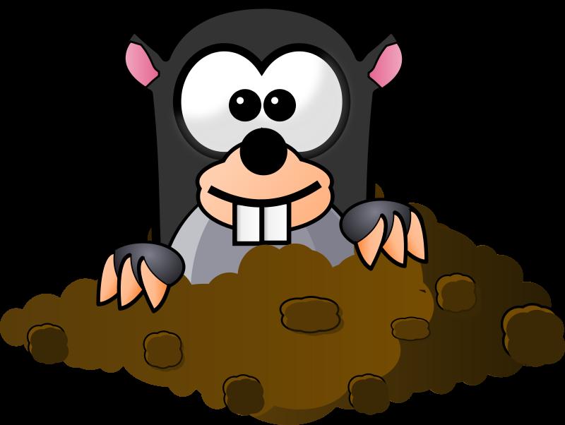 Mole clipart #1
