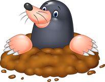 Mole clipart #3