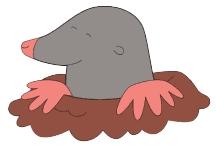 Mole clipart #5