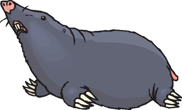 Mole clipart #10