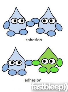 Bio clipart chemistry class And Pinterest on Classroom this