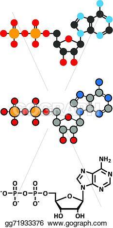 Molecule clipart butter Adenosine plays  molecule renderings