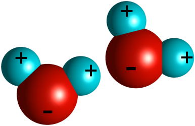 Particle clipart molecule How charged polar Your Two