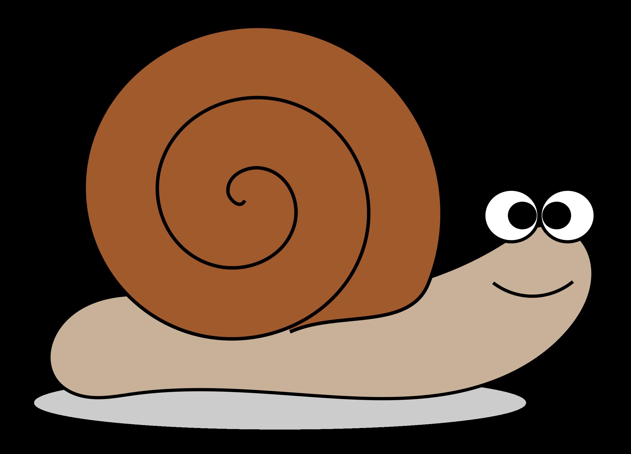 Mollusc clipart Clipart Images Clip Snail domain