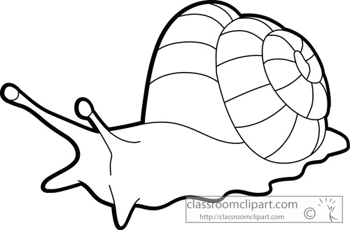 Mollusc clipart Art Fans Snail #87 136
