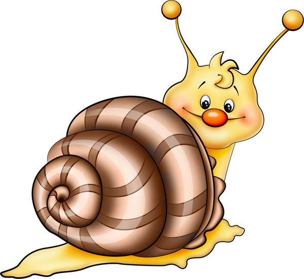 Mollusc clipart insect And Bugs 1729 Picture Brown