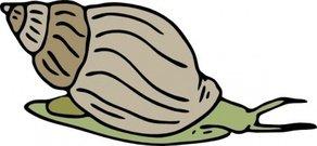 Mollusc clipart land animal #2