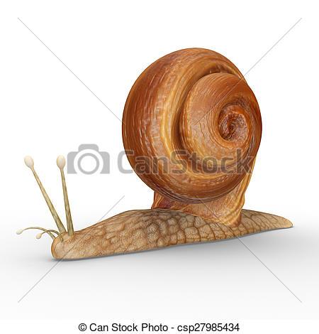 Mollusc clipart land animal #4
