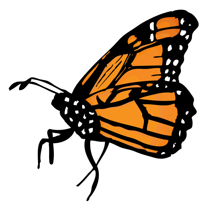 Monarch Butterfly clipart Clip Free Free Cartoon Art