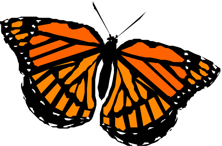 Monarch Butterfly clipart Image clip butterfly at Monarch