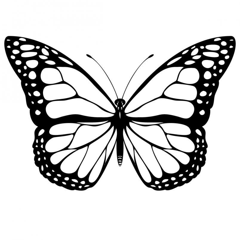 Monarch Butterfly clipart  & Butterfly Butterfly Monarch