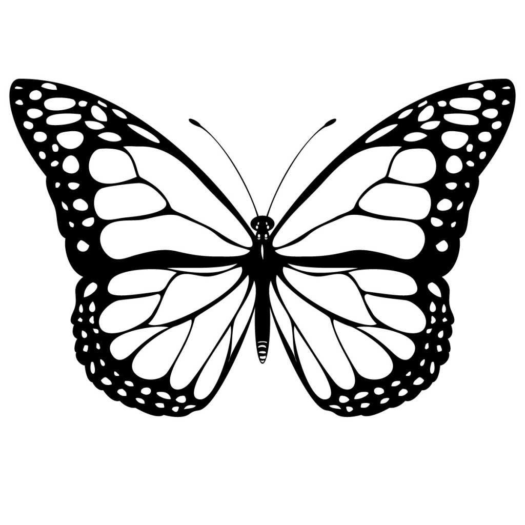 Monarch Butterfly clipart black and white #8