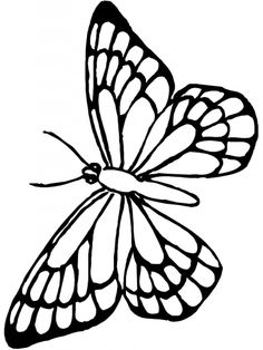 Monarch Butterfly clipart coloring book  Coloring monarch 768x1024 com