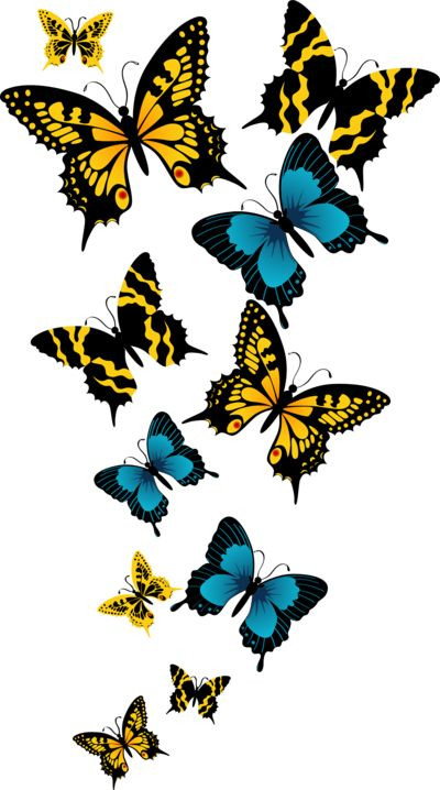 Monarch Butterfly clipart deviantart #9