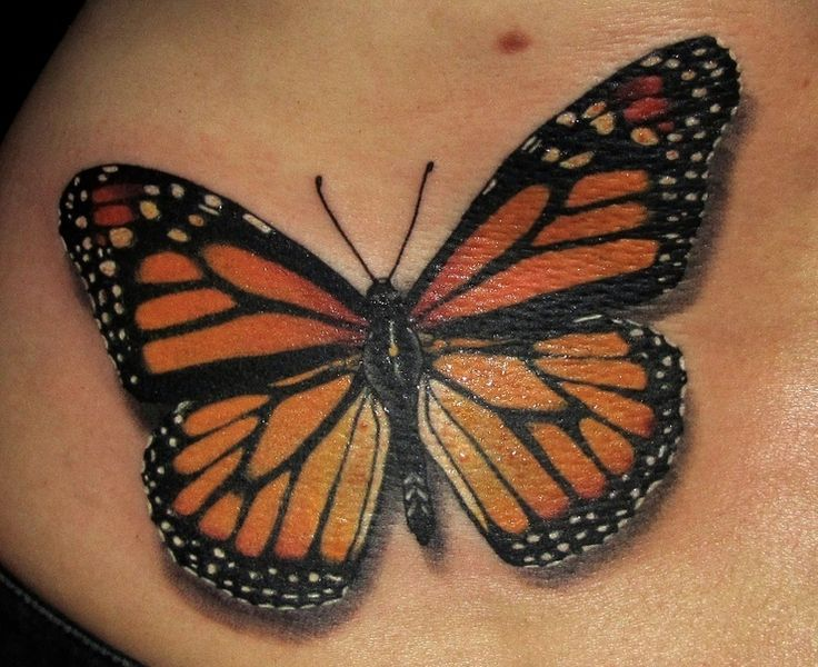 Monarch Butterfly clipart masculine Tattoo Monarch on 20+ Monarch