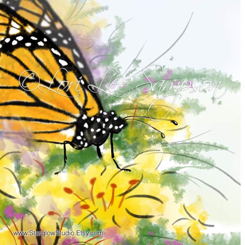 Monarch Butterfly clipart nature #4