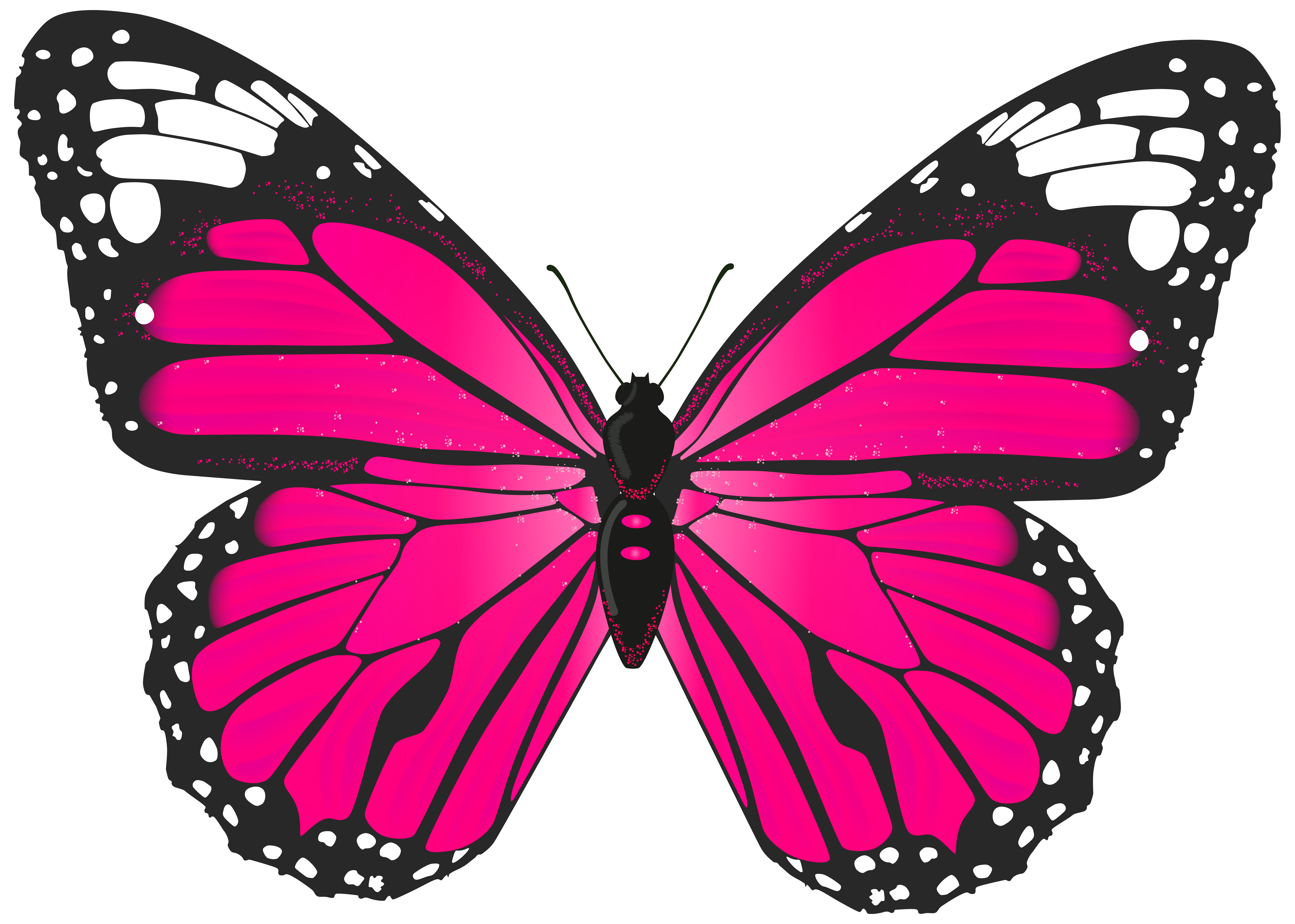 Monarch Butterfly clipart pink Clipart 81 Top Butterfly Free