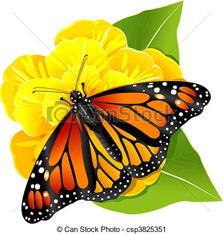Monarch Butterfly clipart stock #3