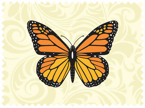 Monarch Butterfly clipart svg #8