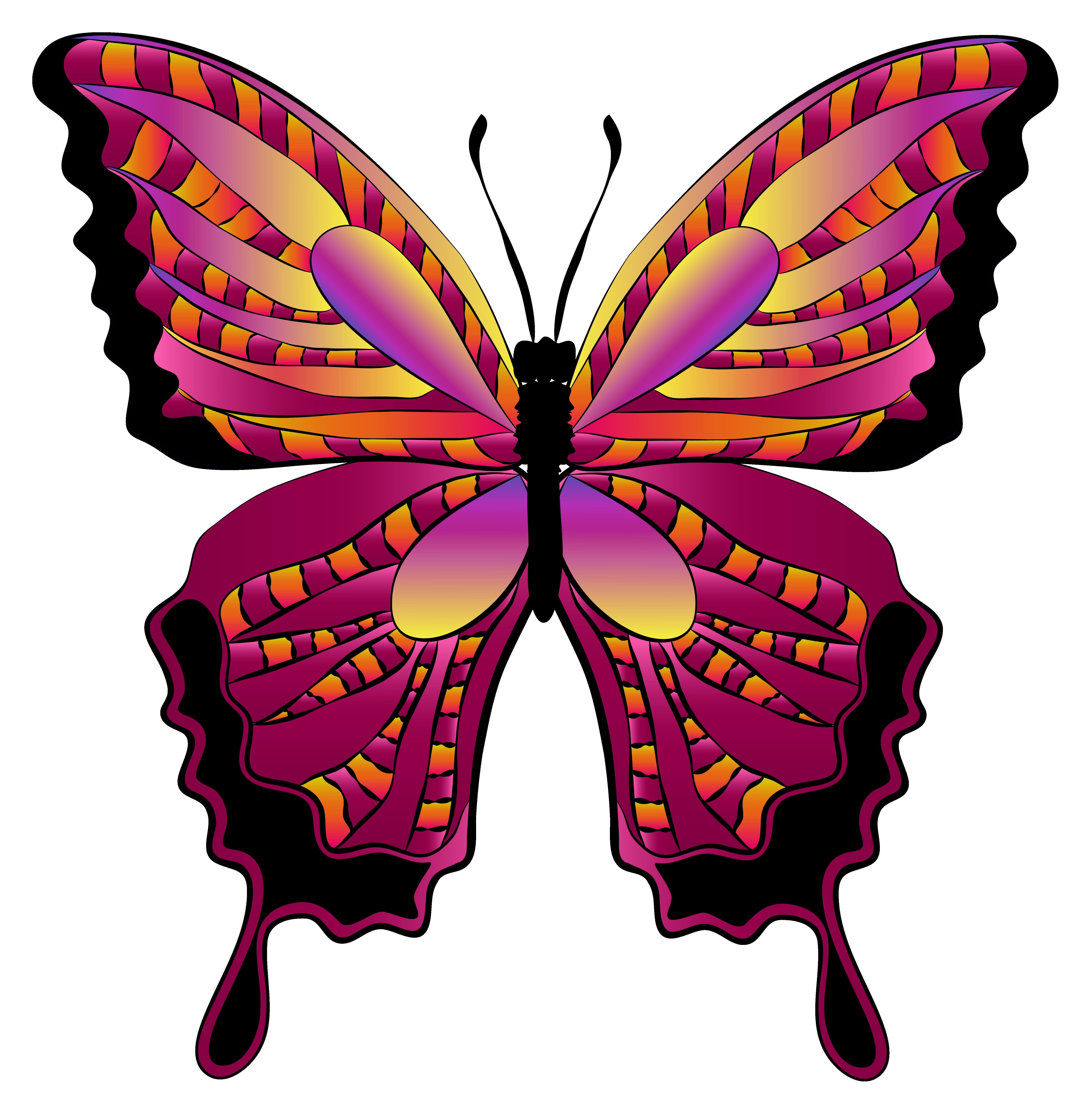 Monarch Butterfly clipart symmetrical Clipart clip ClipartAndScrap butterfly image