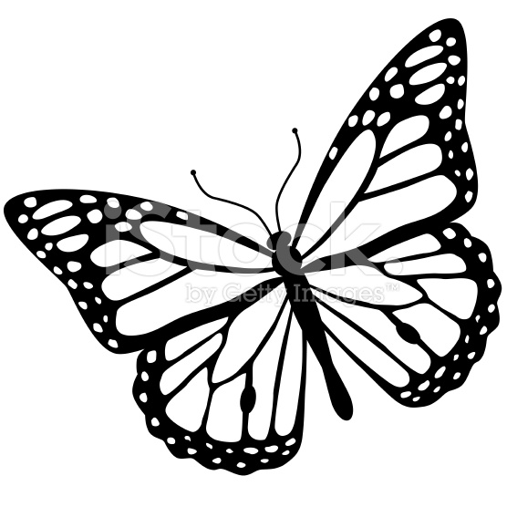 In butterfly butterfly free and