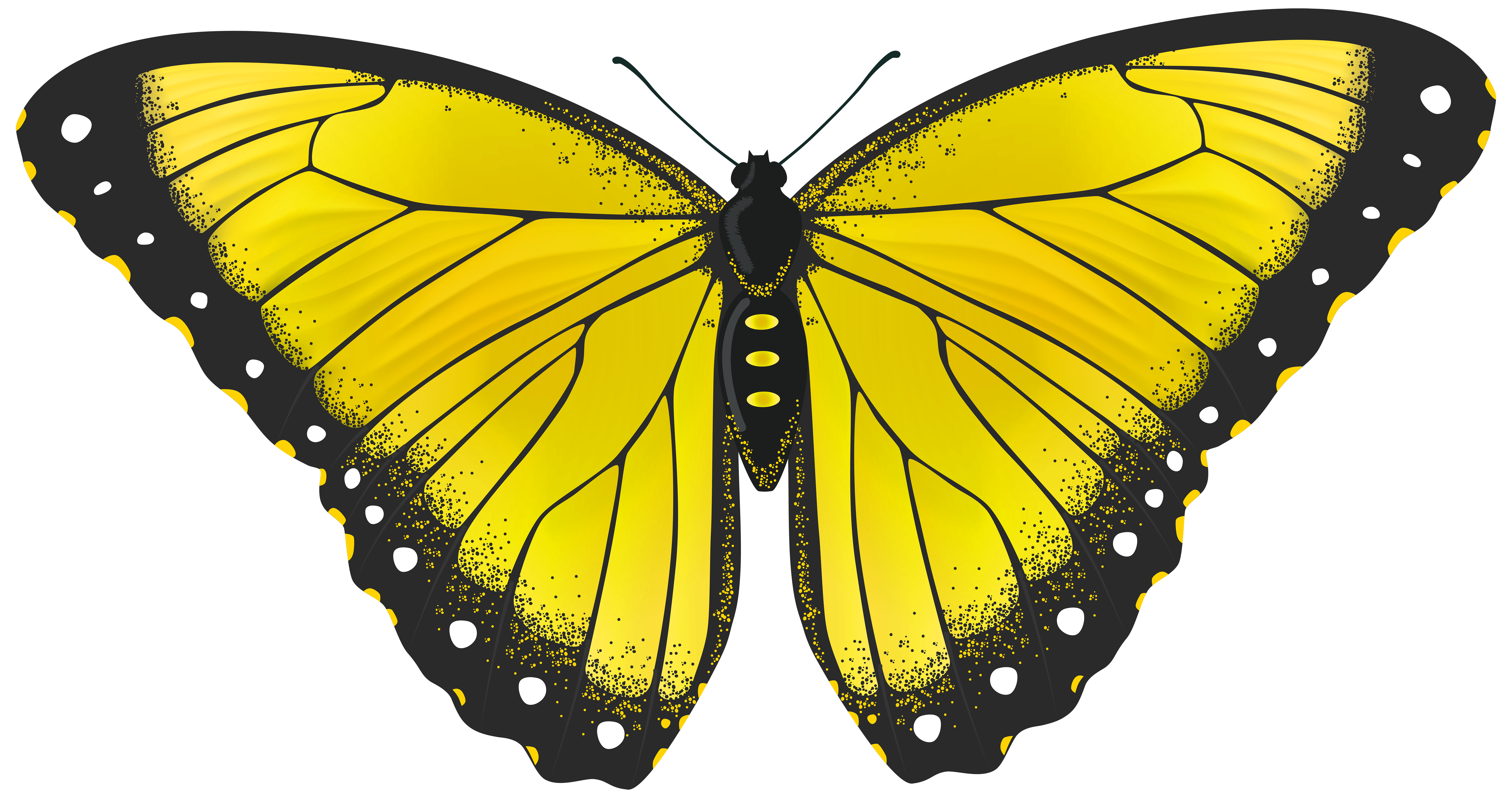 Gallery clipart yellow butterfly  View Butterfly PNG Clip