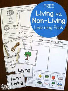 Money clipart non living Vs Non Learning non Living