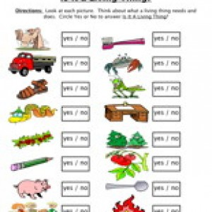 Money clipart non living A Living Worksheet Have Thing