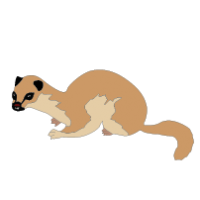Mongoose clipart Clipart Animal Clip collection Archives