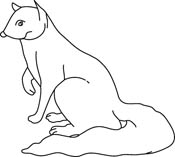 Mongoose clipart black and white Search clipart collection Results Search