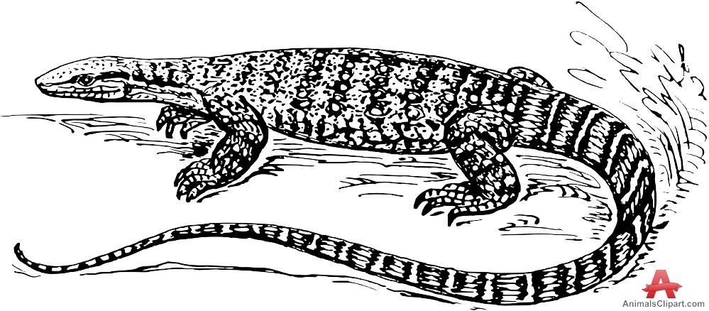 Monitor Lizard clipart Lizard Clipart Monitor Drawing Design