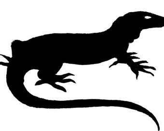 Monitor Lizard clipart Drawings #12 Monitor Monitor Monitor
