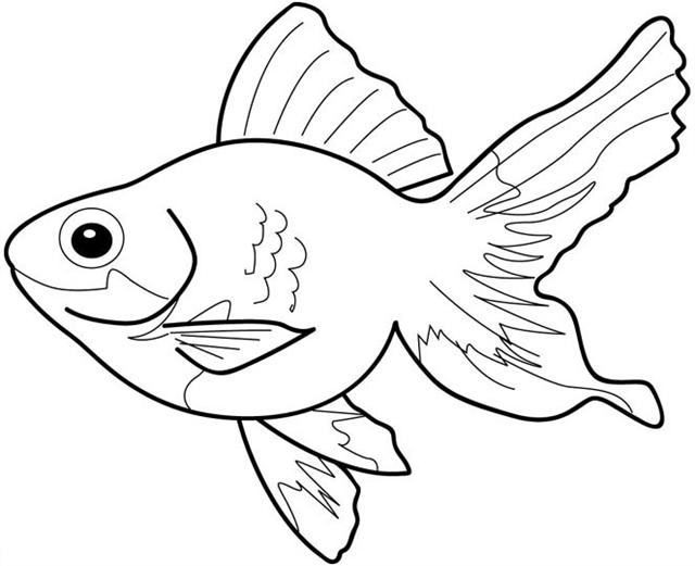 Black & White clipart fish And Fish  art tropical