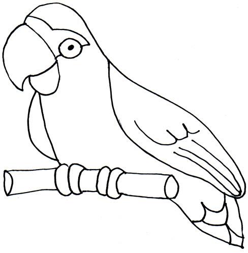 Monochrome clipart parrot Clip photo clip clipart art