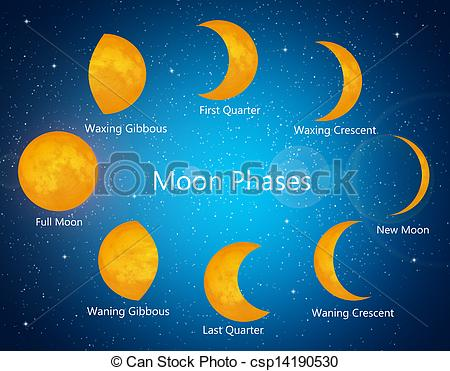 Moon clipart phase the moon #10