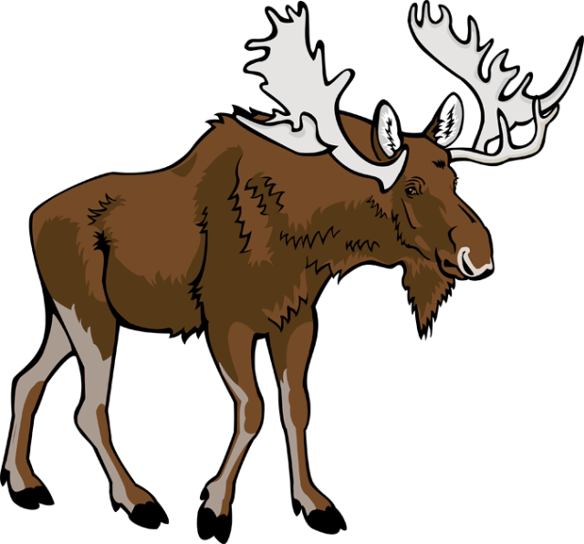 Moose clipart Clipart 2 clipartix moose Moose