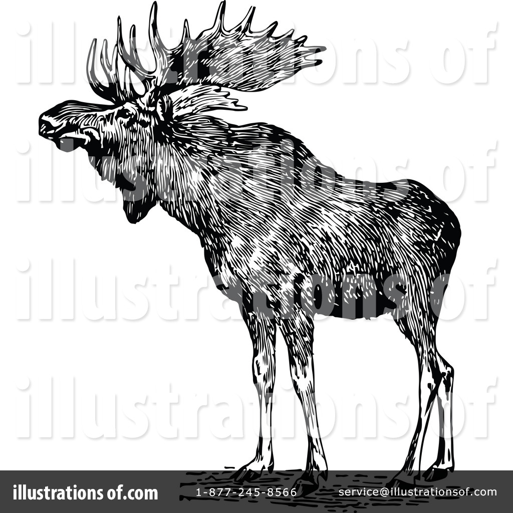 Moose clipart vintage #10