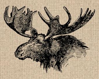 Moose clipart vintage #4