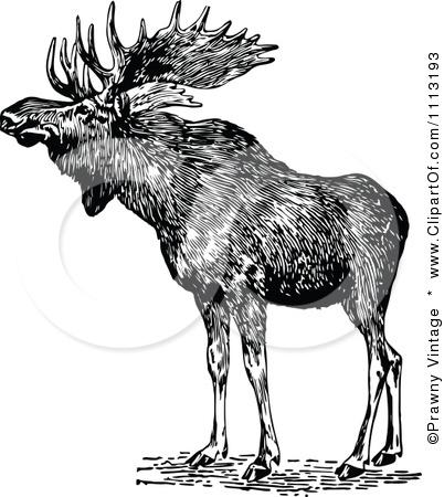 Moose clipart vintage #1