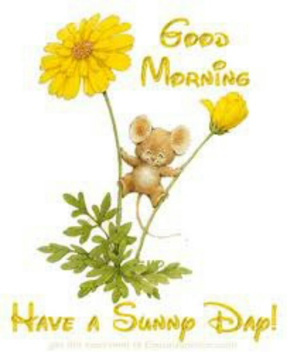 Morning clipart cute Find more Good on Pinterest