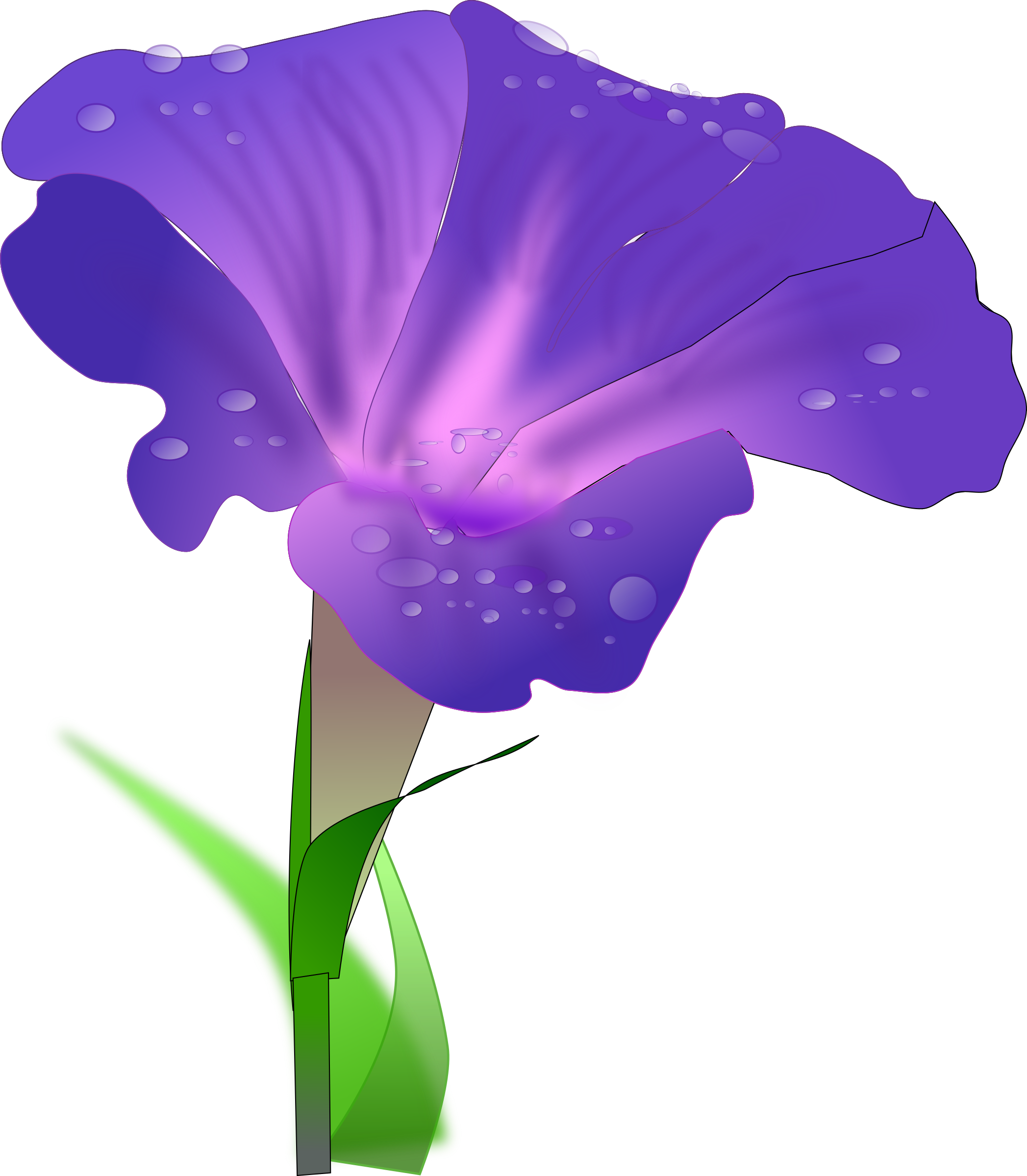 Morning Glory clipart Clipart Clip Art Images Free