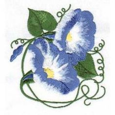 Morning Glory clipart lavender Clip & Glory Glory Morning