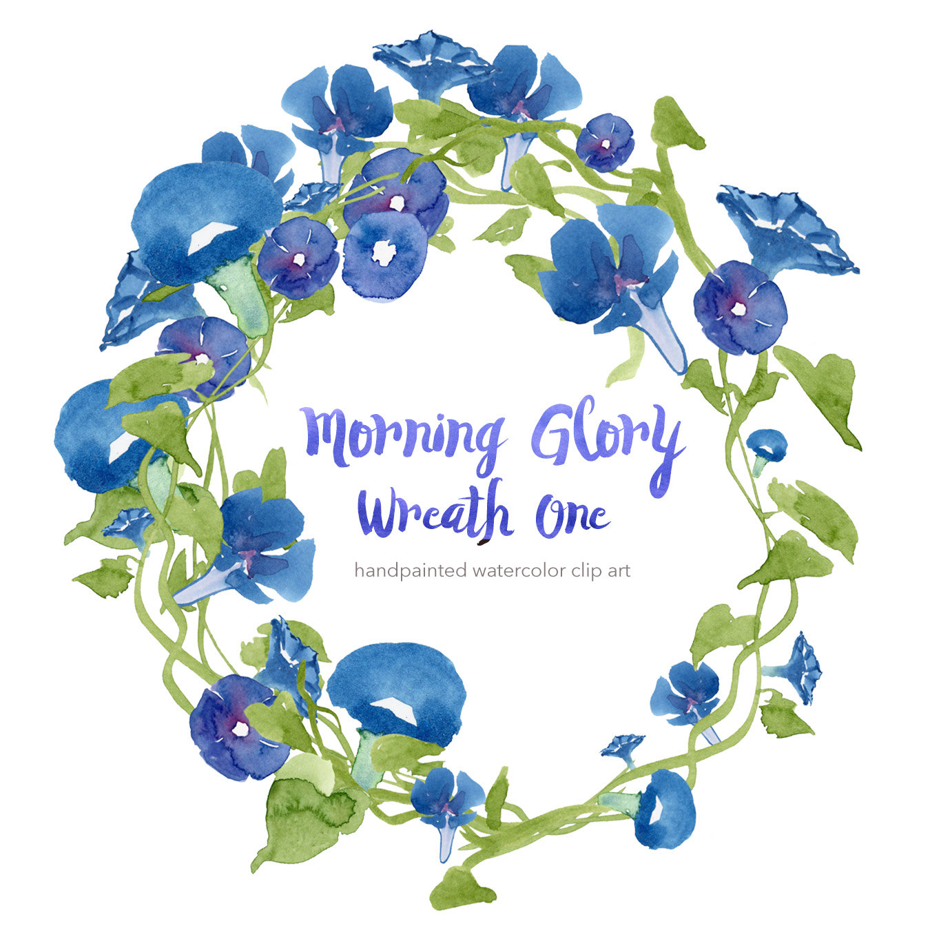 Morning Glory clipart watercolor #1