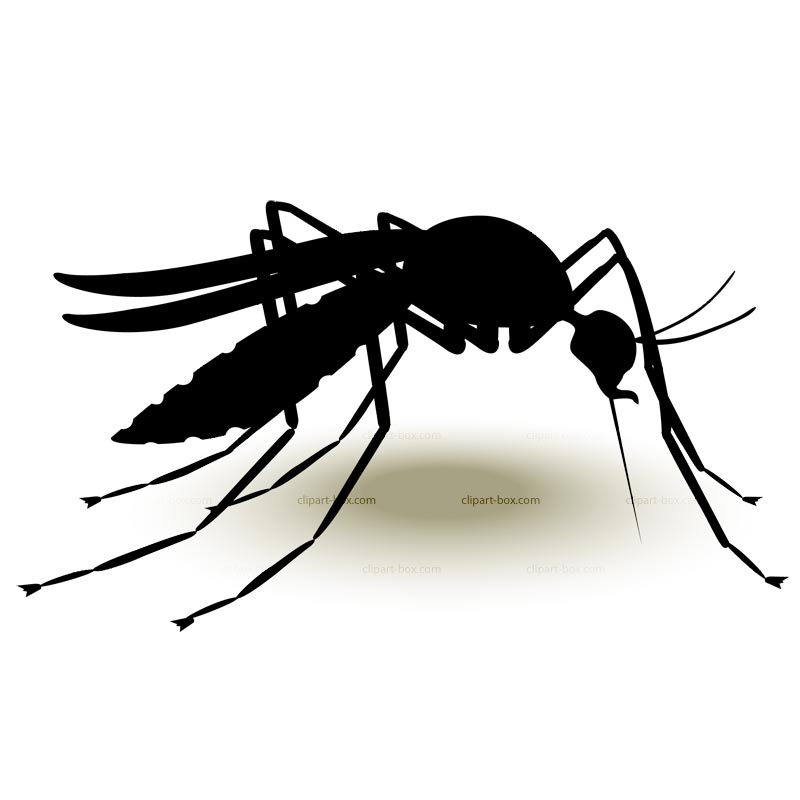 Shadow clipart mosquito #1
