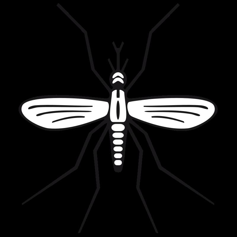 Mosquito clipart Clip 2 art Mosquito clipart