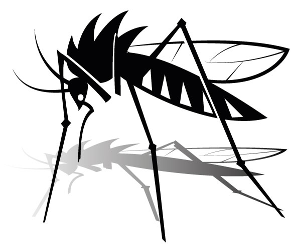 Shadow clipart mosquito #9