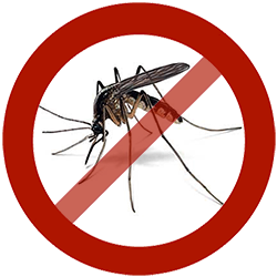 Mosquito clipart scared Diseases prevention malaria dengue Mosquitoes