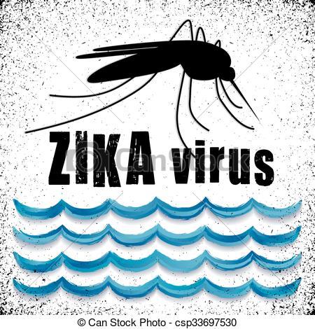 Mosquito clipart zika Standing Mosquito Virus Zika with